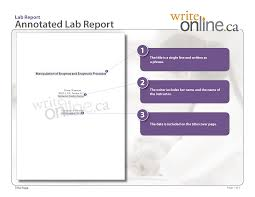 write online lab report writing guide parts of a lab report lab report sample title page