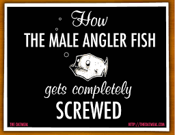 How The Male Angler Fish Gets Completely Screwed The Oatmeal