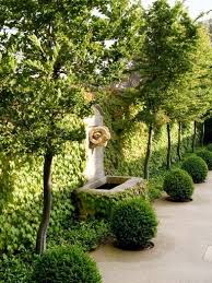 Small Picture 113 best HEDGES AND WALLS images on Pinterest Landscaping ideas