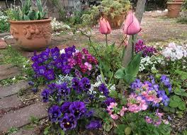 春夏秋冬花壇のレイアウトデザイン例10選花壇におすすめの花も Cuty