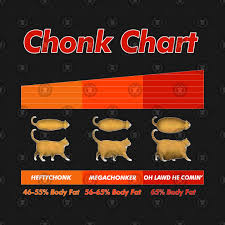 Fat Cat Meme Chonk Chart Funny Pet Lover Gift