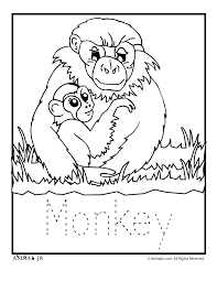 Small Picture Zoo Animal Coloring Pages Zoo Babies zoo babies monkey