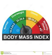 Bmi Or Body Mass Index Infographic Chart Stock Vector