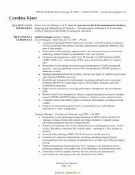 Consultant Resume Template. Leasing Consultant Resume Sample ...