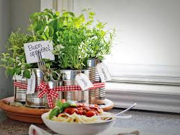 keep it compact diy kitchen countertop herb garden