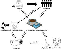 impact of anthropogenic activities on the dissemination of   figure