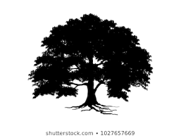 Oak Tree Silhouette Images Stock Photos Vectors Shutterstock
