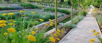 Small Picture The Society of Garden Designers Garden Design Journal