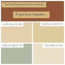 15 new best warm cream paint color collection
