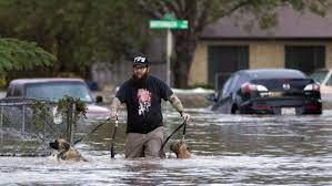 We did not find results for: Halloween Storms Flood Texas On Tear Across Usa