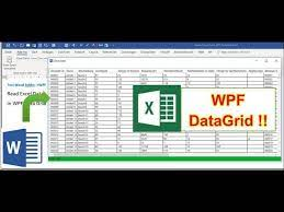 load excel in word addin into wpf