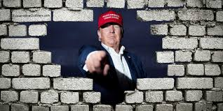 poll do you support building a wall on the border build wall