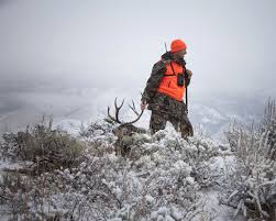 Best Times To Hunt Deer Chart Beautiful Best Lever Action