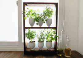 Small Picture Garden Design Garden Design with hanging indoor herb garden