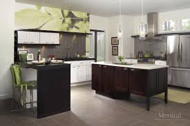 Merillat Kitchen Cabinets Merillat Classicr Tolani In Maple Chiffon Merillat