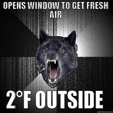 Insanity Arctic Wolf - quickmeme via Relatably.com
