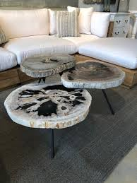 arhaus petrified wood coffee tables