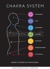 Chakra System Chart Chakra System Human Body Chart Seven Stock Vector Royalty