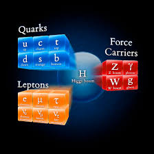 fundamental particles এর চিত্র ফলাফল