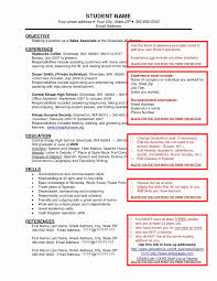 Sales Associate Job Description Resume New 51 Awesome Boutique ...