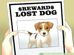 how to make lost dog flyers lost dog flyer template free scoutandgather co