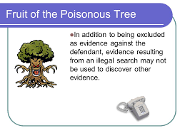Criminal Evidence 6th Edition  Ppt DownloadFruit Of Poisonous Tree Doctrine Definition