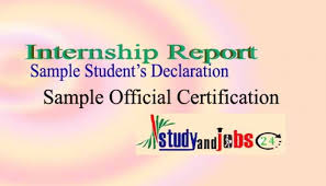 Internship Report: Sample Student's Declaration And Official ...