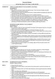 Leadershipe Sample Executive Samples Prime Experience