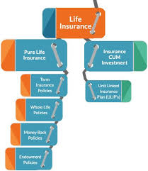 Life Insurance Compare Best Life Insurance Plans Policies Adorable Life Insurance Quotes Compare The Market