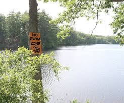 Rescue at Georgiaville Pond prevents drowning | The Valley Breeze
