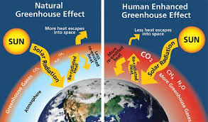 an essay about the global warming climate change frenzy the atmosphere that confirmed that carbon dioxide when interacting water vapor becomes a significant greenhouse gas that produces unusual warming