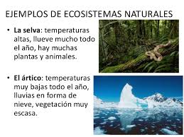 Resultado de imagen de Eco sistemas naturales