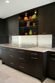 Formica Kitchen Cabinet Doors 16 Best Images About Sleek Modern Kitchens From Crystal On