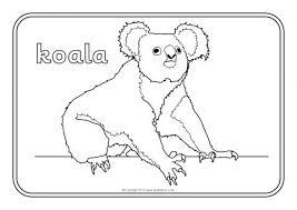 Innovation Idea Australian Animals To Colour Colouring Sheets Sb9002