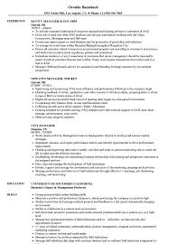 Download City Manager Resume Sample as Image file