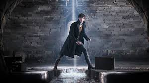 The new 'Fantastic Beasts' image hints at a huge part of Newt's past