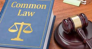 Et si des juges de common law rejoignaient les juridictions parisiennes ?, Contentieux - Les Echos Executives