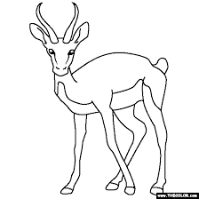 Small Picture Safari Animals Online Coloring Pages Page 1 safari animals