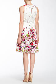 Maggy London Size Chart Maggy London Floral Print Fit Flare Dress Nordstrom Rack