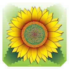 <b>Fibonacci</b> Sunflower – Urban Barn Quilts