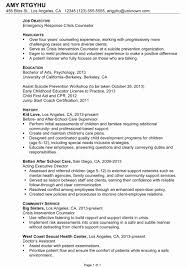 customs broker resume co customs broker resume