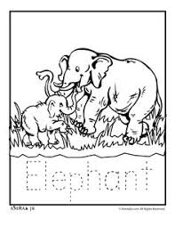 Small Picture Zoo Animal Coloring Pages Baby Monkey Preschool Theme Primates