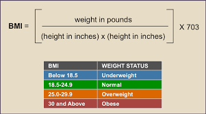 Body Mass Index Needs Two New Friends But It Only Gets One
