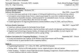Resume Template Ngo Image Collections Certificate Design And