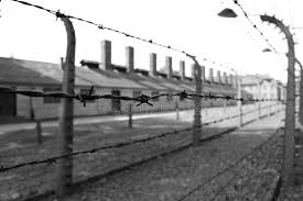barbed wire fence concentration camp. Download Auschwitz Concentration Camp, Germany - Prison And Barbed Wire Fence On 15.06. Camp