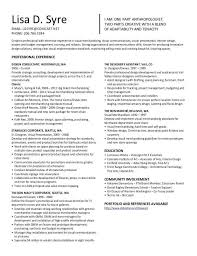 Visual Merchandiser Resume - Resume Sample