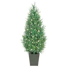 Decorative Indoor Trees Similiar Artificial Indoor Trees With Lights Keywords