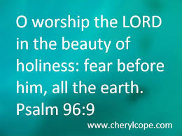 Image result for beautiful of holiness picture