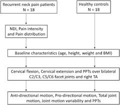Recurrent Neck Pain Patients Exhibit Altered Joint Motion