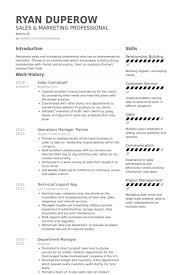 Pre Sales Consultant Resume It Consultant Resume Examples Sample
